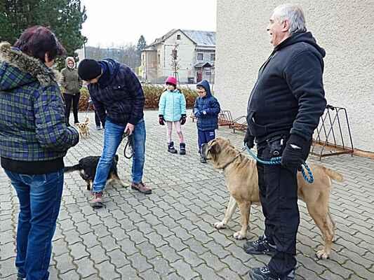 Procházka s mazlíčky - 1.ročník- 30.12.2017 .pořádal fotbalový oddíl