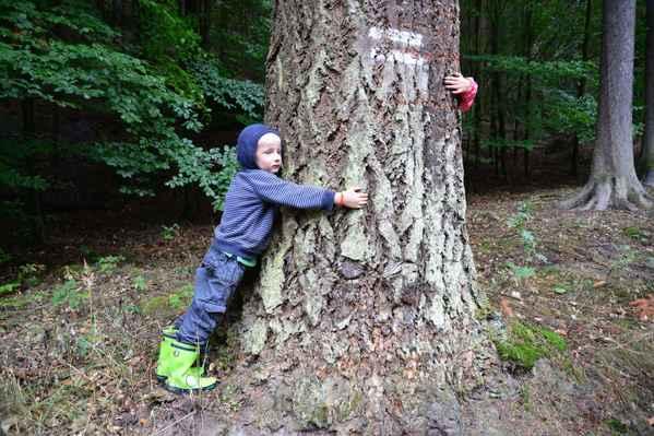 Objímají strom, aby jim dodal sílu a Ondřej poslouchá, jestli tam teče ta míza :).