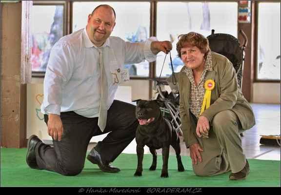 Glimmer Man Domidar Dogs (Breno Domidar Dogs X Maya Stawk Wieksza Niz Zycie) - BOB