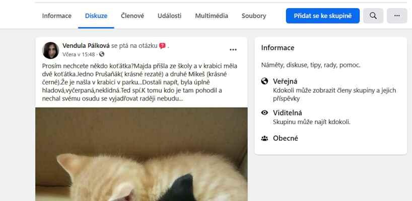 FB skupina Prušaňáci .. - 9.6.2021 - Oznamovatelka z Prušánek nám nahlásila, že její dcera našla po cestě ze školy lepenkovou krabici s dvěma koťaty. Jsou velmi vyhladovělá a vystrašená, měla by být ještě u kočičí mámy. Jsou to dva kocourci, zrzavý Jeníček a černý Venoušek.